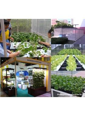 Grow Systems